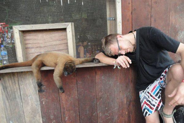 Buli a majommal - Amazonas