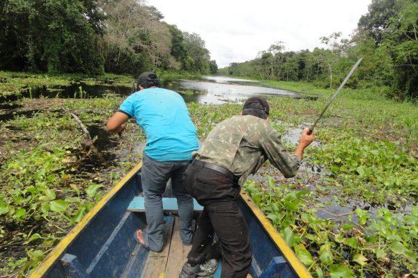 Csónakkal az Amazonason