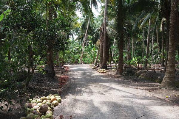 Thaiföld,Prachuabkirikan