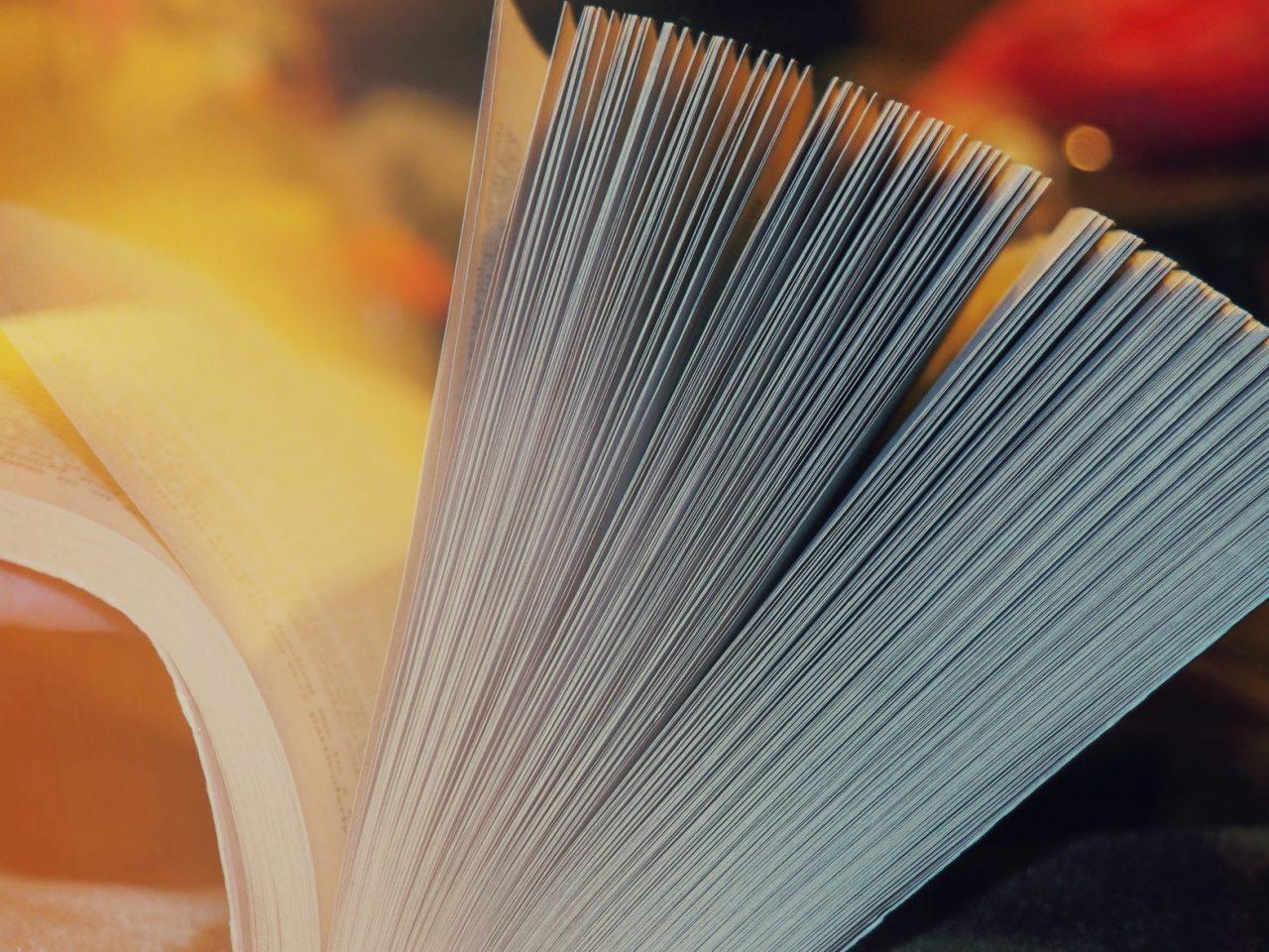 Könyvdedikálások a fesztiválon
