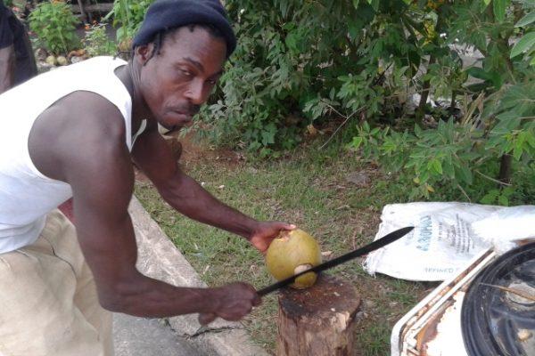 jamaica-jaratlan001 pálinkás