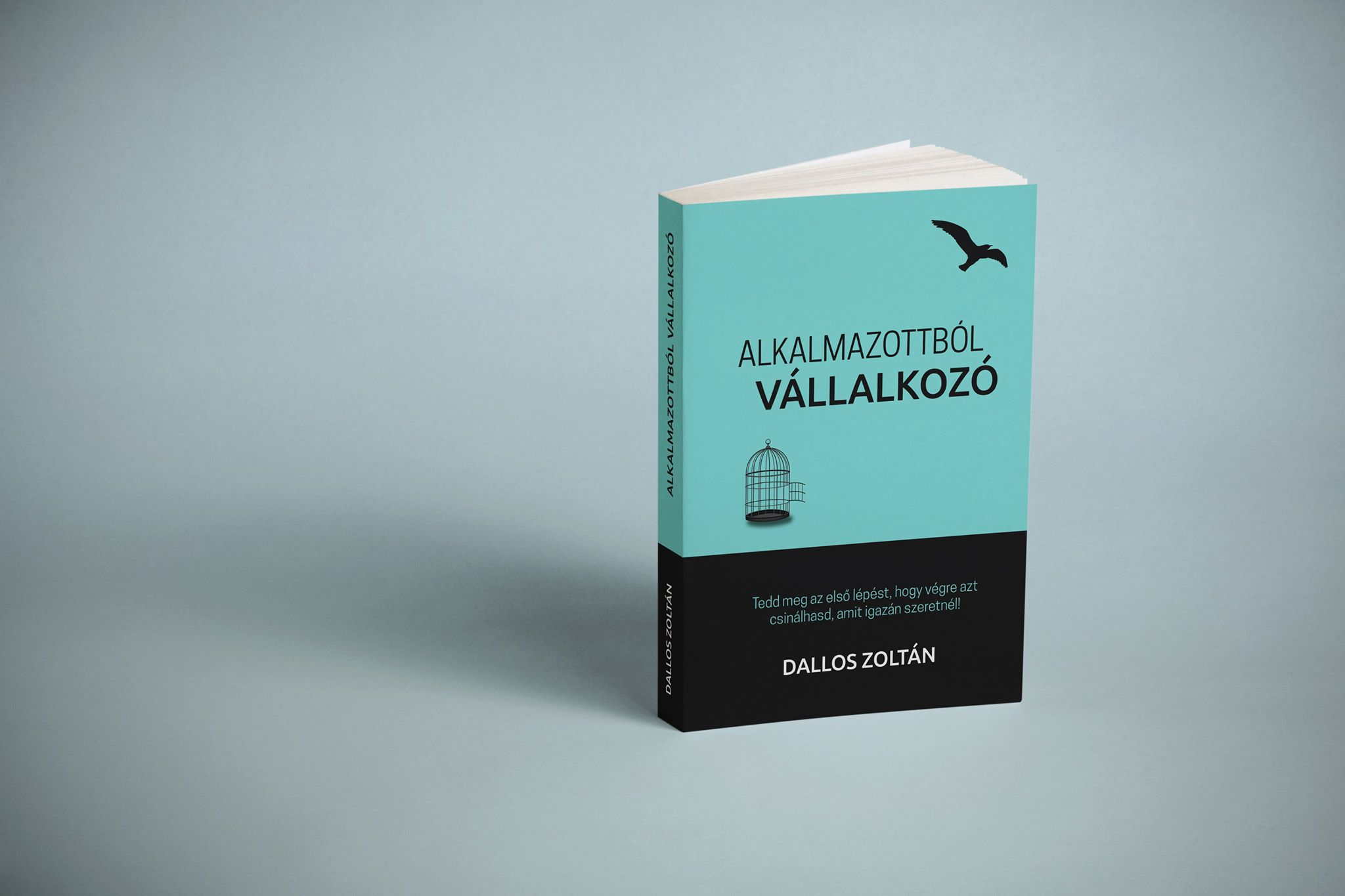 Könyvajánló: Dallos Zoltán – Alkalmazottból vállalkozó