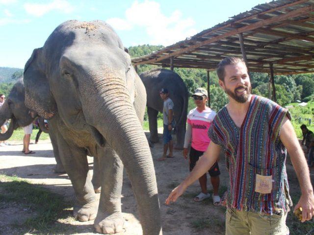 Andris és egy elefánt