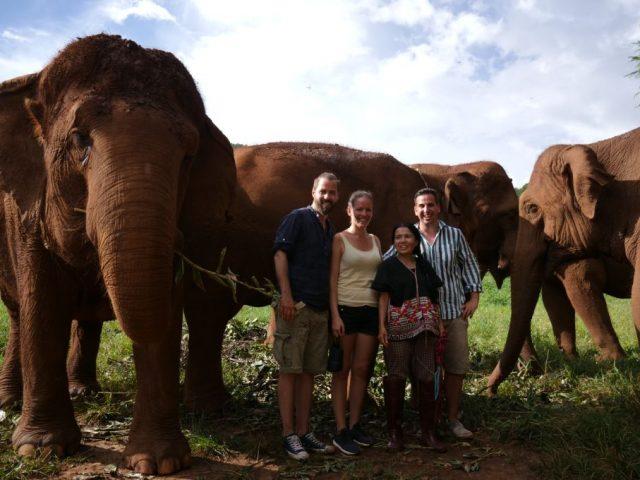 elefántok között 1